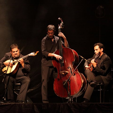 camane fado performs onstage at festival