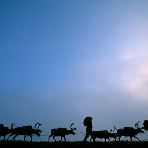 Sweden - Lapland and the Midnight Sun - Europe travel packages from India