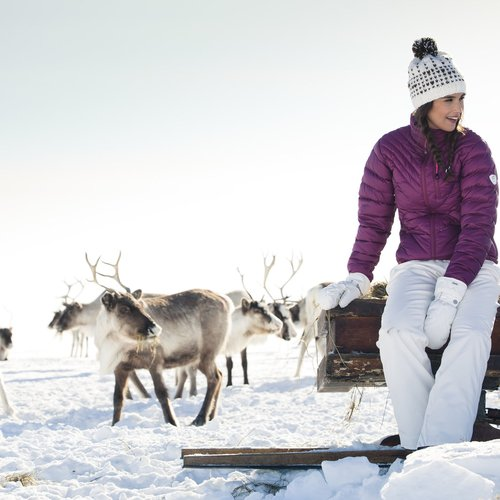 Lapland Winter & The Northern Lights - Norway Tour Packages