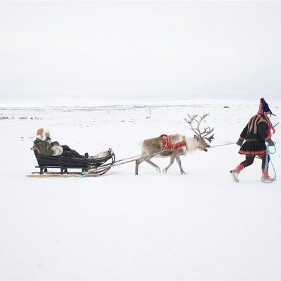 Let the Reindeers Drive You Gently Across the Northern Plains - Norway Travel Packages from India
