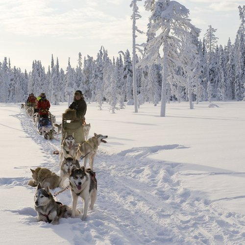 Slow Down this is Finland - Finland Tour Packages from India