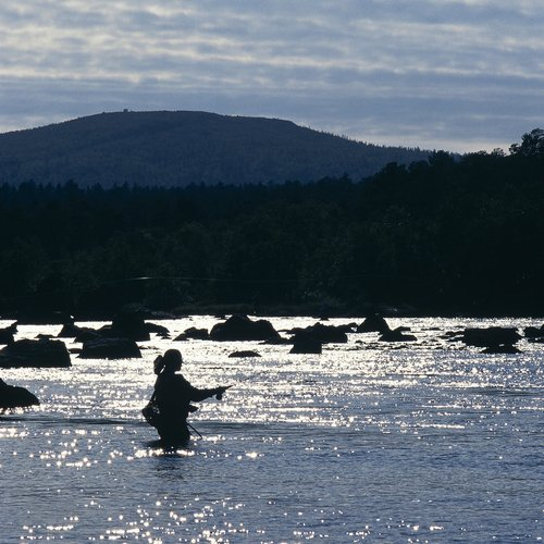 Try Fly Fishing - Finland Northern Lights Tour Packages from India