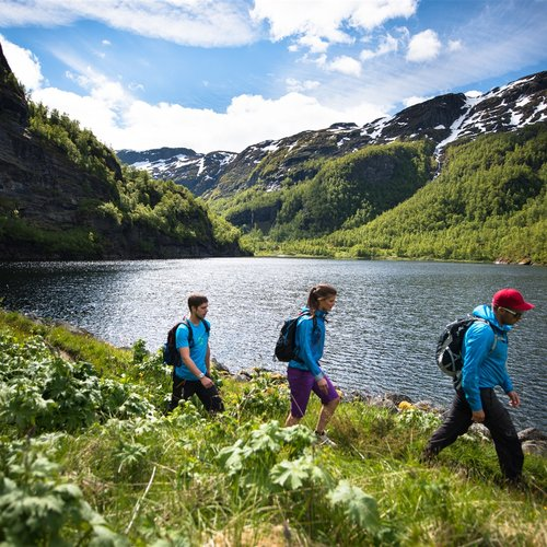 Varied Landscape with Deep Fjords, High Mountain Peaks, and Rugged wilderness - Scandinavia Tours